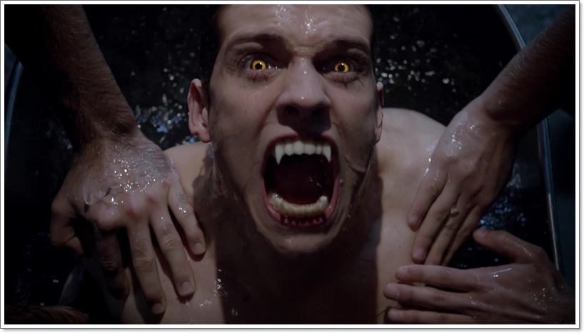Teen Wolf Quiz: Are You A Real Werewolf?